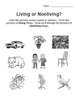 Living or Nonliving? Worksheet