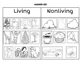 Printables Living And Nonliving Worksheets vs nonliving worksheet davezan living davezan