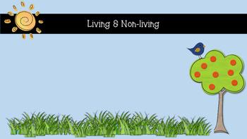 Livng & Non-living Anchor Charts