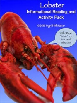 All About Lobster!