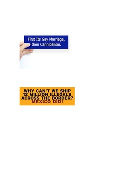 Logical Fallacies Bumper Stickers for Logic Unit