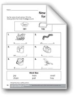 Long /a/ Vowel digraphs: /ai/ and /ay/
