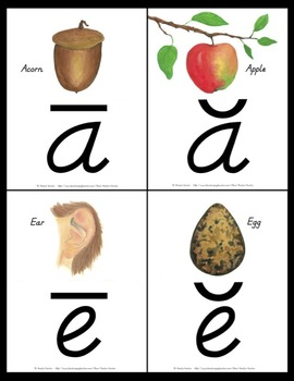 Long and Short Vowel Posters and Flash Cards D'Nealian
