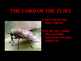Lord of the Flies Slideshow Powerpoint Lecture