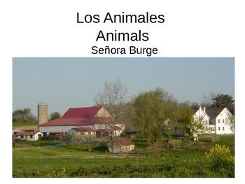 Los Animales Presentación