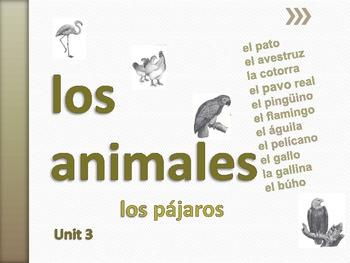 Los Animales Unit 3