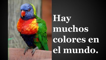 Los Colores - Flash Cards for learning colors in Spanish - photos