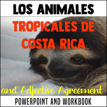 Spanish: adjective agreement, large numbers, animal names,