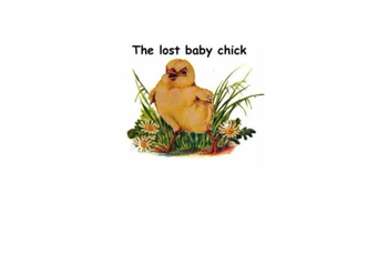 Lost baby chick
