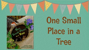 Louisiana Guidebooks Lesson: One Small Place in a Tree Pre