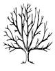 Love Tree - Love is...