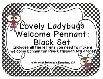 Lovely Ladybug Welcome Pennant: Black Set