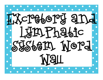 Lymphatic and Excretory System  Word Wall