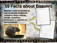 MAMMALS IN YOUR BACKYARD BUNDLE: 7 engaging PPTs w facts,