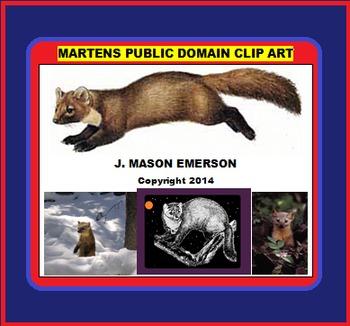 ARTS, BIOLOGY: MARTENS PUBLIC DOMAIN CLIP ART (Some Spanis