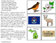 MICHIGAN State Symbols ADAPTED BOOK for Special Education