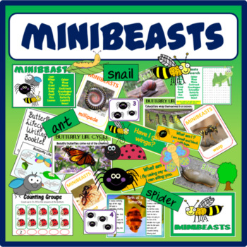 MINIBEASTS INSECTS SCIENCE RESOURCES EARLY YEARS KS1-2 DIS