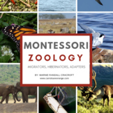 MONTESSORI Life Science/Zoology - Migrators, Adaptors, and