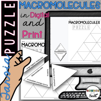 Macromolecules Puzzle for Review or Assessment