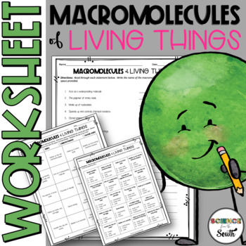 Macromolecules of Living Things Worksheet for Middle and H