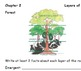 Magic Tree House- Rain Forest Packet