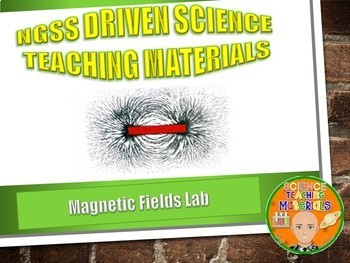 Magnetic Fields Lab