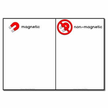 Magnetic and Non-Magnetic Worksheet