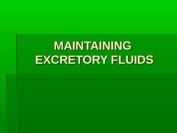 Maintaining Excretory Fluids