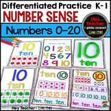 Number Sense and Number Writing Practice 0-20