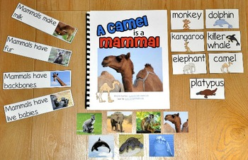 """Mammals Adapted Book--""""A Camel is a Mammal"""" (w/Real Photos)"""