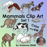 Clip Art - Mammals - Realistic - Color - Black Line - Blac