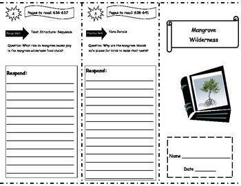 Mangrove Wilderness Storytown Comprehension Trifold