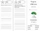 Mangrove Wilderness Trifold - Storytown 4th Grade Unit 5 Week 4