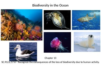 Marine Science - Biodiversity in the Ocean