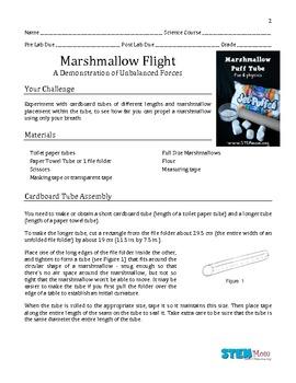 Marshmallow Flight Lab