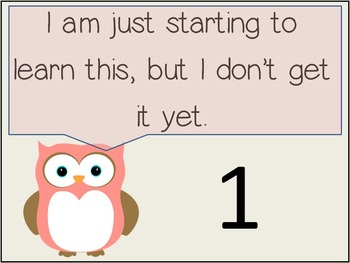 Marzano's Level of Understanding Posters (Owl Themed) with