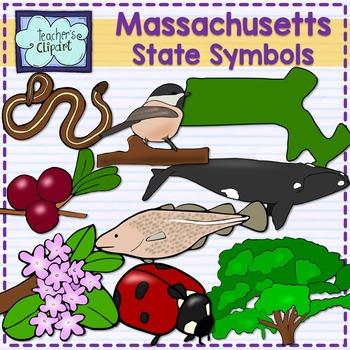 Massachusetts state symbols clipart