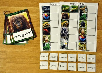 Matching Activities:  Rain Forest Match and Flip Books and