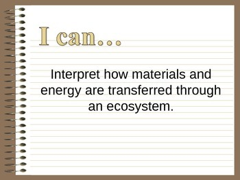 Materials and Energy Transferred through an Ecosystem