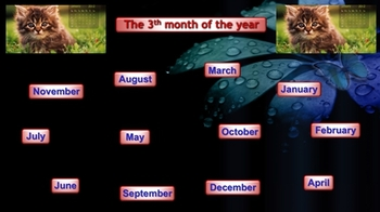 Math Months of the Year