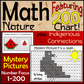 Math Mystery Pictures  Aboriginal Designs Included Nos. 1-200