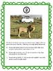 Math Review Scavenger Hunt Grades 4-6 African Lions