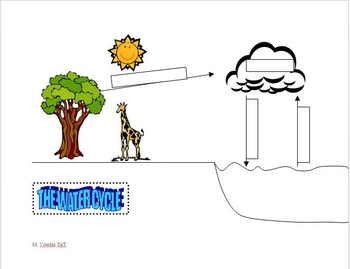 Matter Cycles in Ecosystems:  Water cycle, Carbon cycle, N