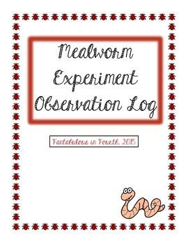 Mealworm Experiment Observation Log