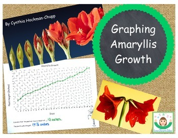 Measuring & Graphing with an Amaryllis
