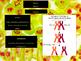 Meiosis Human Cells