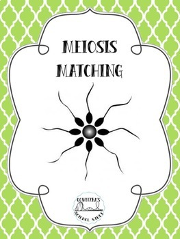 Meiosis Matching Cards