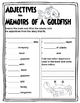 Memoirs of a Goldfish by Devin Scillian - Book Study