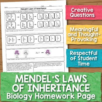 Mendel and Laws of Inheritance Biology Homework Worksheet
