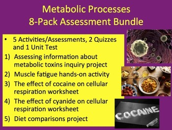 Metabolic Processes Bundle - 5 Activities, 1 Project, 2 Qu